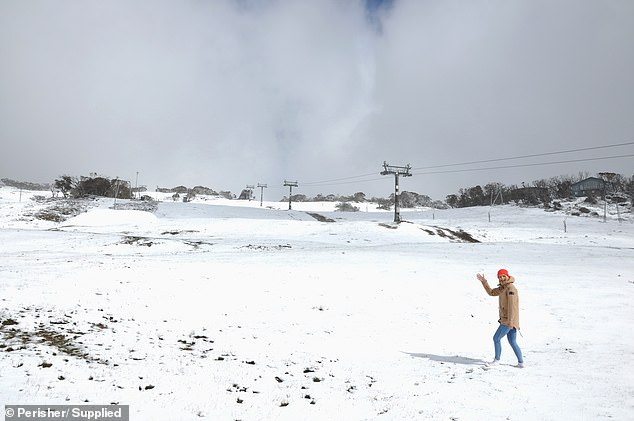 The flakes are expected to continue over the coming days with blizzard conditions settling across the Snowy Mountains